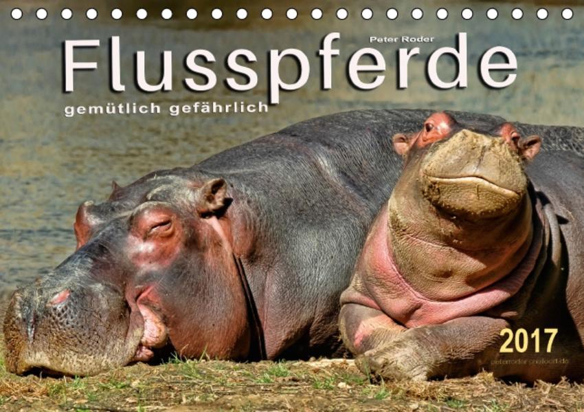 Flusspferde - gemütlich gefährlich (Tischkalender 2017 DIN A5 quer) - Coverbild