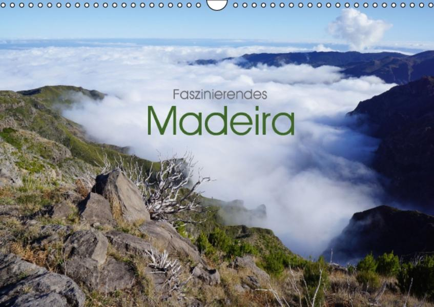 Faszinierendes Madeira (Wandkalender 2017 DIN A3 quer) - Coverbild