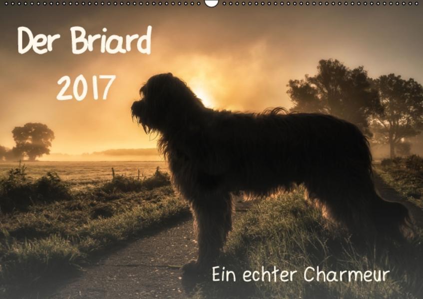 Der Briard 2017 - Ein echter Charmeur (Wandkalender 2017 DIN A2 quer) - Coverbild