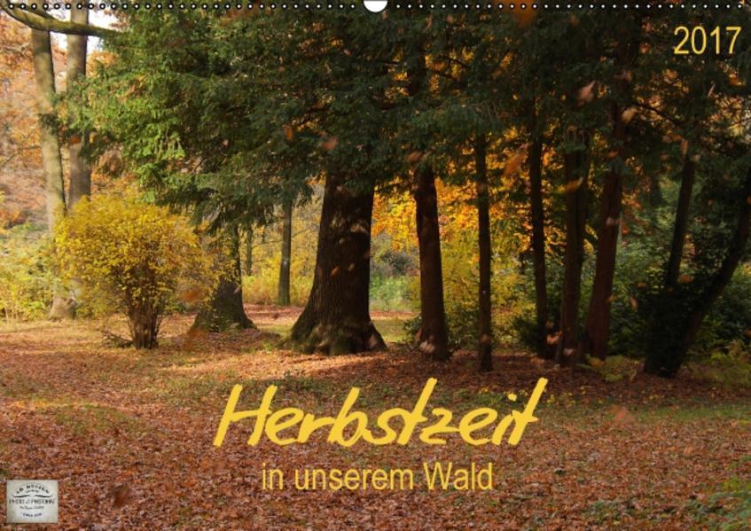 Herbstzeit in unserem Wald (Wandkalender 2017 DIN A2 quer) - Coverbild