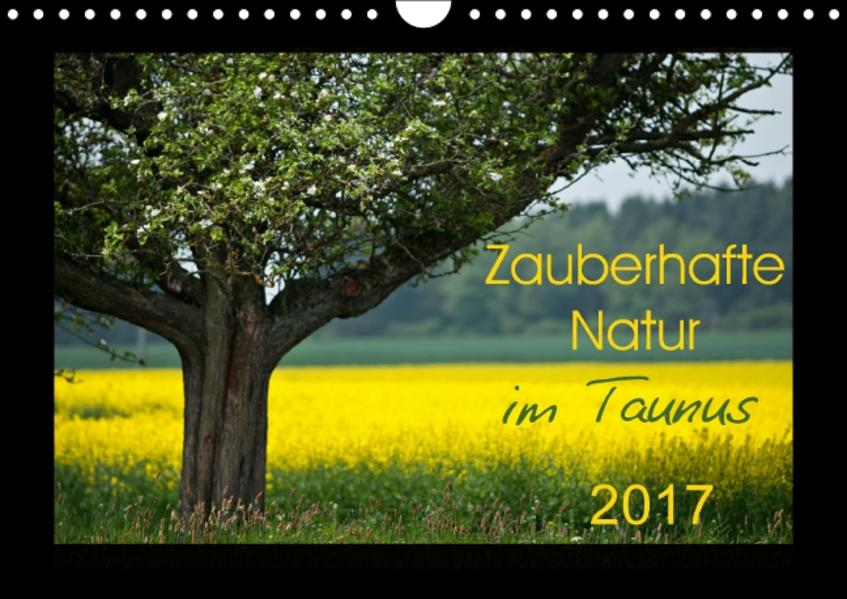 Zauberhafte Natur im Taunus (Wandkalender 2017 DIN A4 quer) - Coverbild