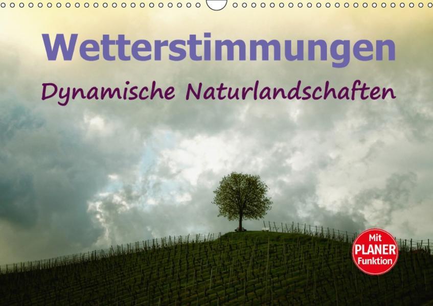 Wetterstimmungen. Dynamische Naturlandschaften (Wandkalender 2017 DIN A3 quer) - Coverbild