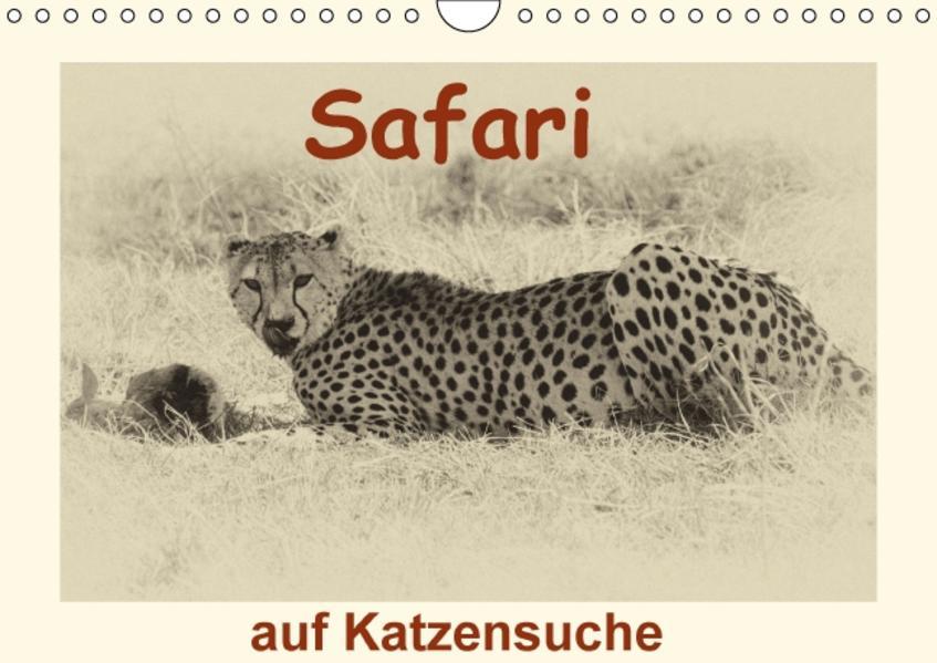 Safari - auf Katzensuche (Wandkalender 2017 DIN A4 quer) - Coverbild