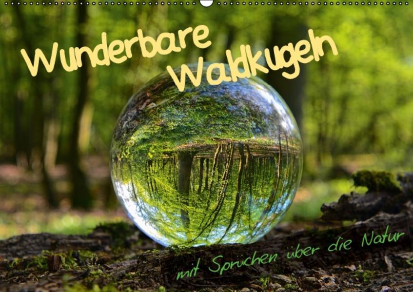 Wunderbare Waldkugeln (Wandkalender 2017 DIN A2 quer) - Coverbild