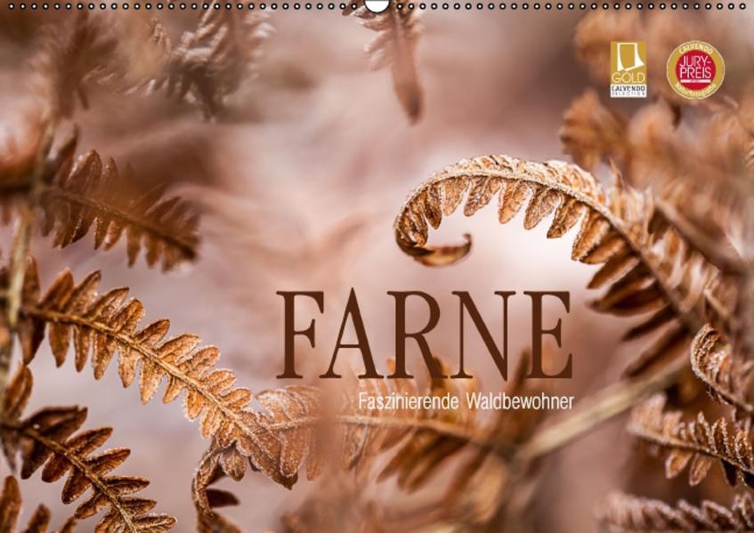 FARNE Faszinierende Waldbewohner (Wandkalender 2017 DIN A2 quer) - Coverbild