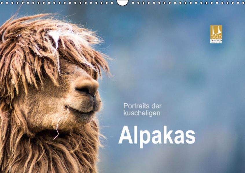 Portraits der kuscheligen Alpakas (Wandkalender 2017 DIN A3 quer) - Coverbild