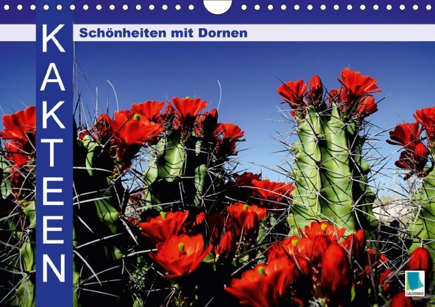 Kakteen: Schönheiten mit Dornen (Wandkalender 2017 DIN A4 quer) - Coverbild