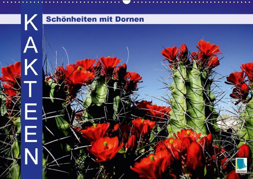 Kakteen: Schönheiten mit Dornen (Wandkalender 2017 DIN A2 quer) - Coverbild