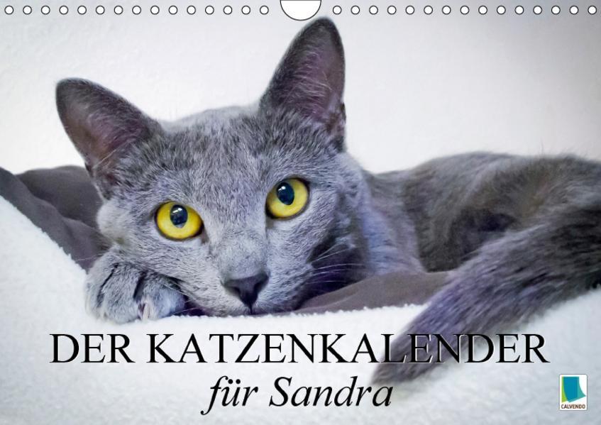 Der Katzenkalender für Sandra (Wandkalender 2017 DIN A4 quer) - Coverbild