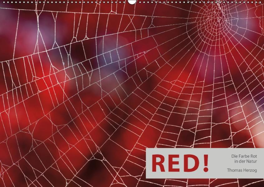 RED! (Wandkalender 2017 DIN A2 quer) - Coverbild