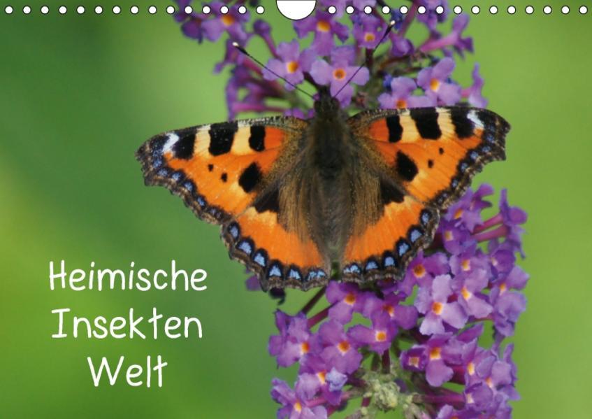 Heimische Insekten Welten (Wandkalender 2017 DIN A4 quer) - Coverbild
