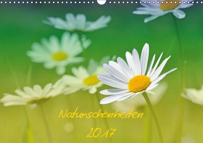 Naturschönheiten 2017 (Wandkalender 2017 DIN A3 quer) - Coverbild