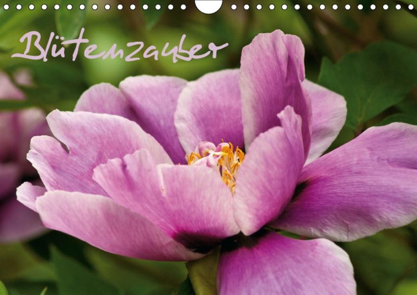 Blütenzauber (Wandkalender 2017 DIN A4 quer) - Coverbild