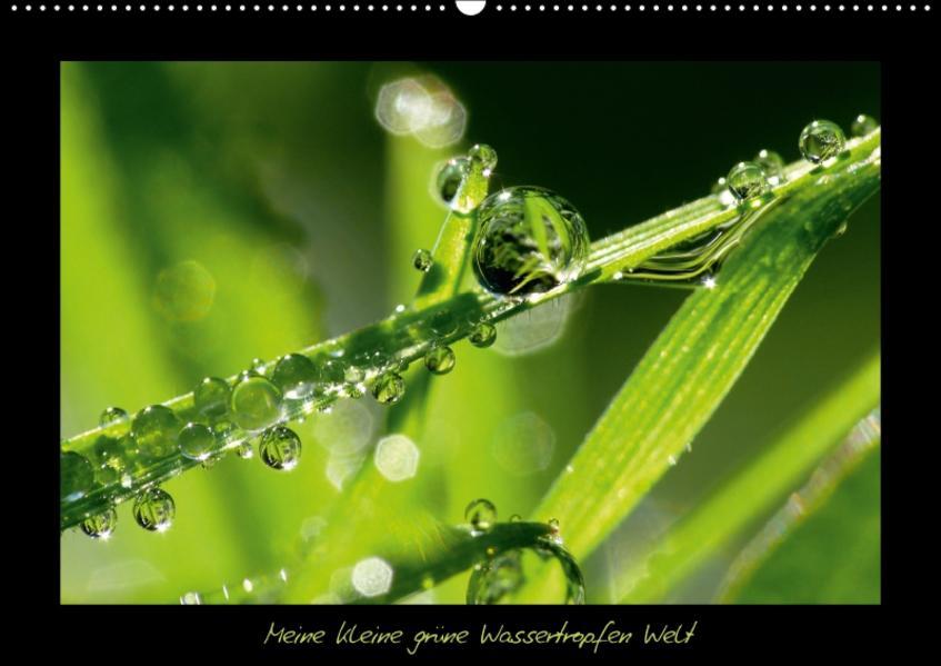 Meine kleine grüne Wassertropfen Welt (Wandkalender 2017 DIN A2 quer) - Coverbild