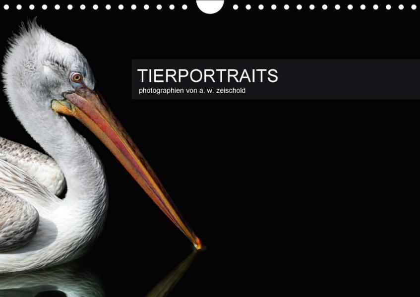 Tierportraits (Wandkalender 2017 DIN A4 quer) - Coverbild