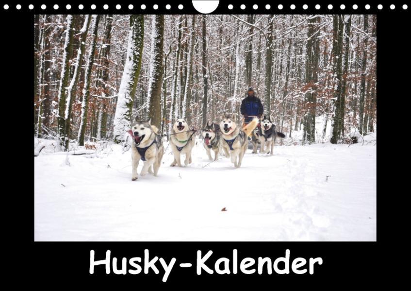 Husky-Kalender (Wandkalender 2017 DIN A4 quer) - Coverbild