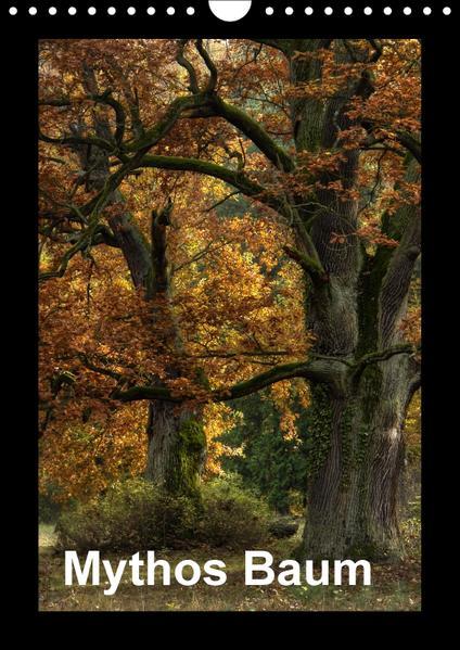 Mythos Baum / 2017 (Wandkalender 2017 DIN A4 hoch) - Coverbild