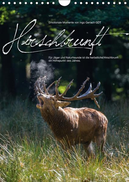 Emotionale Momente: Hirschbrunft (Wandkalender 2017 DIN A4 hoch) - Coverbild