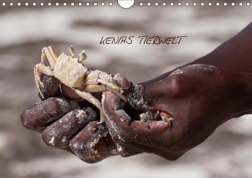 Kenias TierweltAT-Version  (Wandkalender 2017 DIN A4 quer) - Coverbild