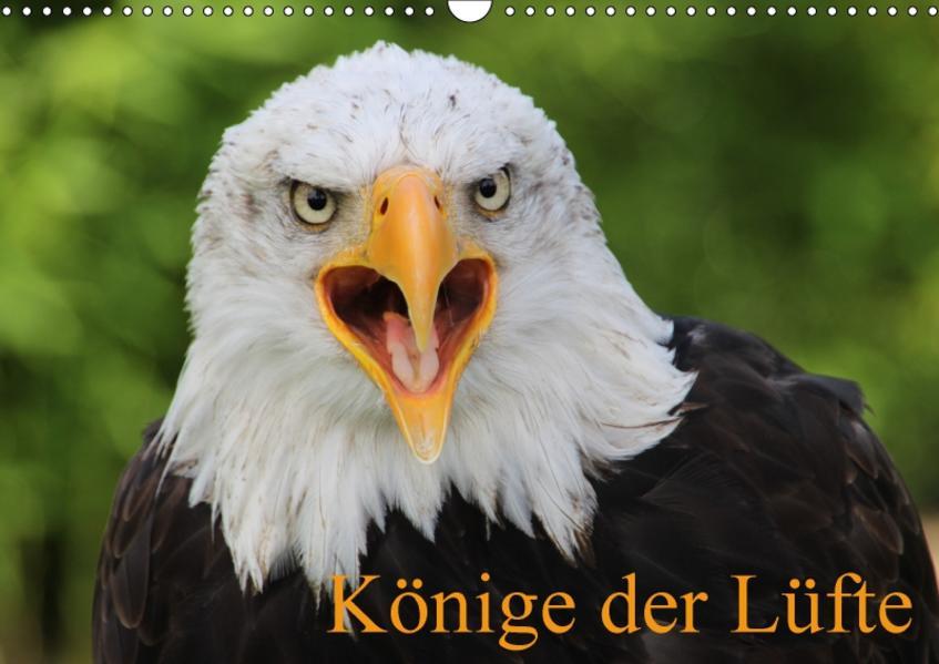 Könige der Lüfte (Wandkalender 2017 DIN A3 quer) - Coverbild