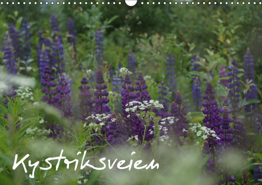 Kystriksveien (Wandkalender 2017 DIN A3 quer) - Coverbild