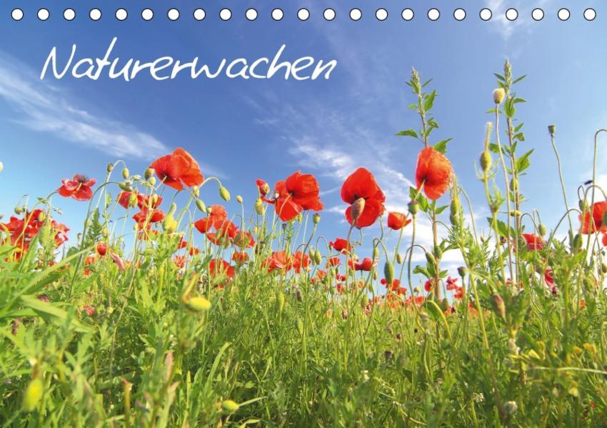 Naturerwachen (Tischkalender 2017 DIN A5 quer) - Coverbild