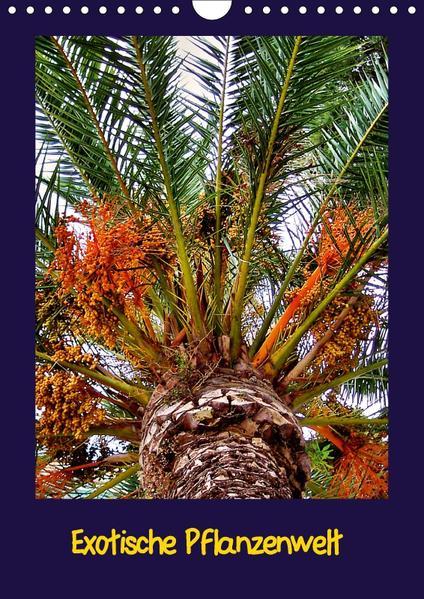 Exotische Pflanzenwelt (Wandkalender 2017 DIN A4 hoch) - Coverbild
