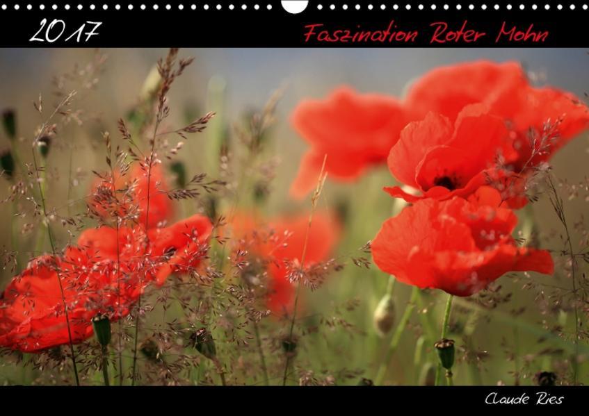 Faszination Roter Mohn (Wandkalender 2017 DIN A3 quer) - Coverbild