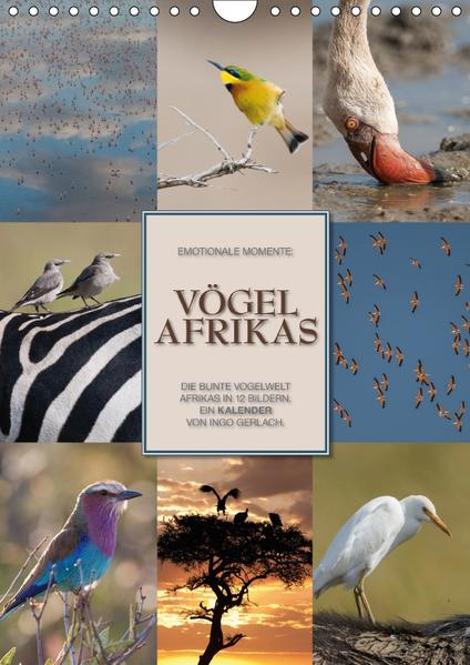 Emotionale Momente: Vögel Afrikas (Wandkalender 2017 DIN A4 hoch) - Coverbild