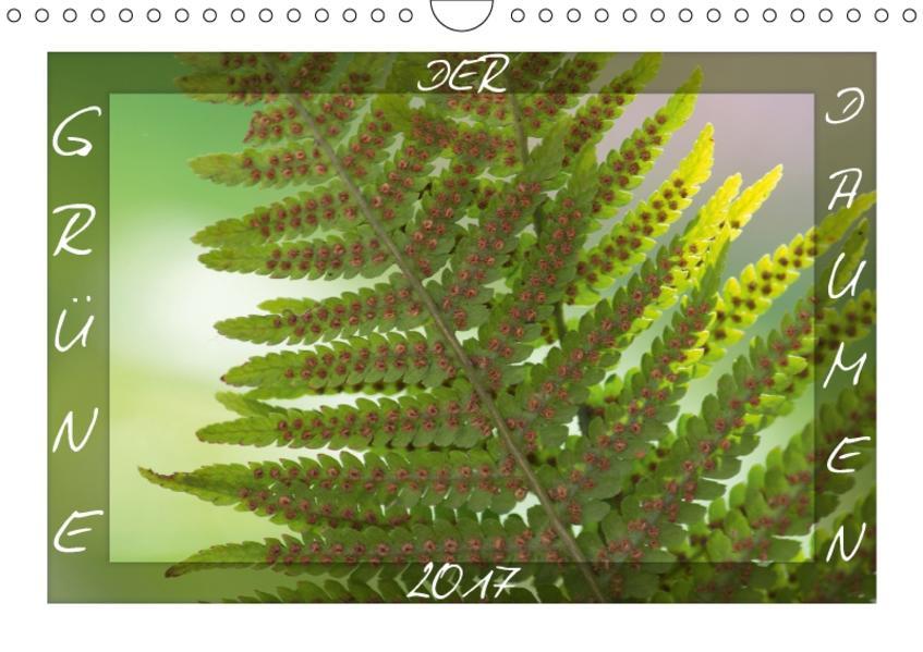 DER GRÜNE DAUMEN (Wandkalender 2017 DIN A4 quer) - Coverbild