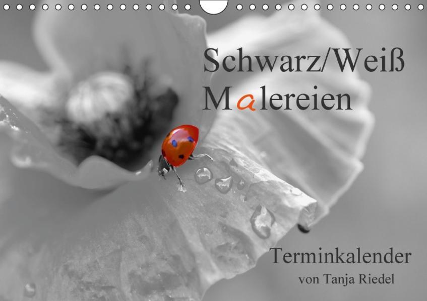 Schwarz-Weiß Malereien Terminkalender von Tanja Riedel für die SchweizCH-Version  (Wandkalender 2017 DIN A4 quer) - Coverbild
