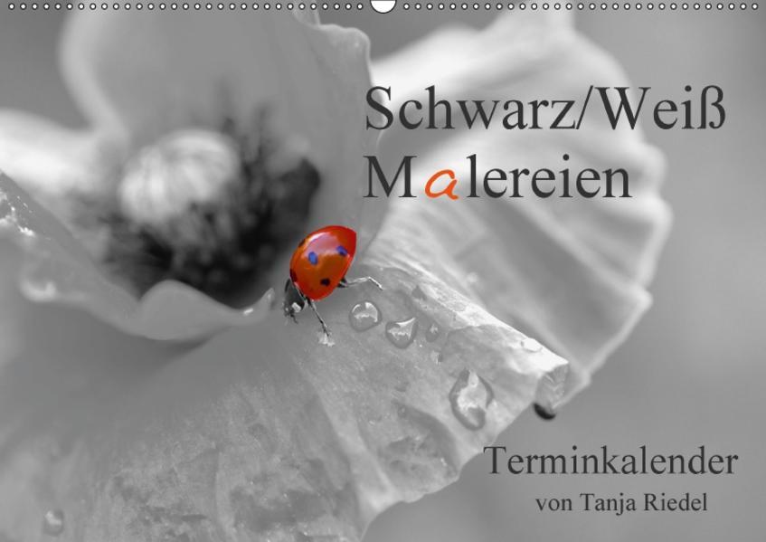 Schwarz-Weiß Malereien Terminkalender von Tanja Riedel für die SchweizCH-Version  (Wandkalender 2017 DIN A2 quer) - Coverbild