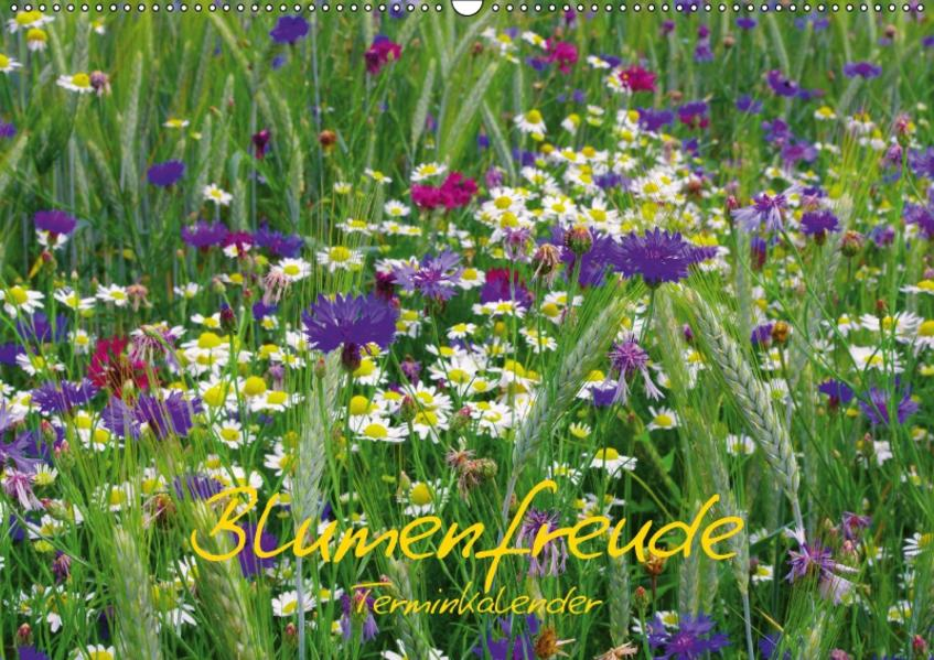 Blumenfreude Schweizer KalendariumCH-Version  (Wandkalender 2017 DIN A2 quer) - Coverbild