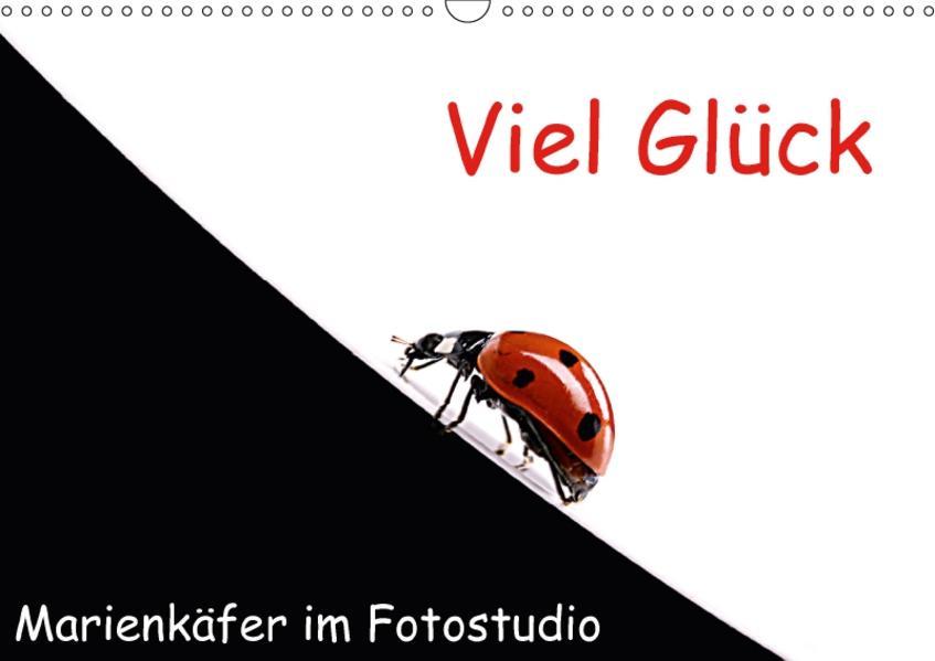 Viel Glück - Marienkäfer im Fotostudio (Wandkalender 2017 DIN A3 quer) - Coverbild