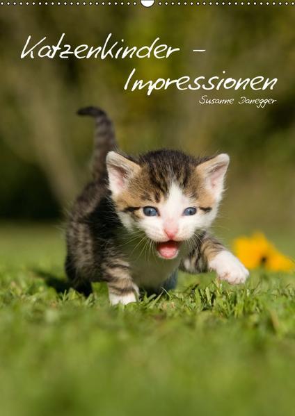 Katzenkinder - Impressionen (Wandkalender 2017 DIN A2 hoch) - Coverbild