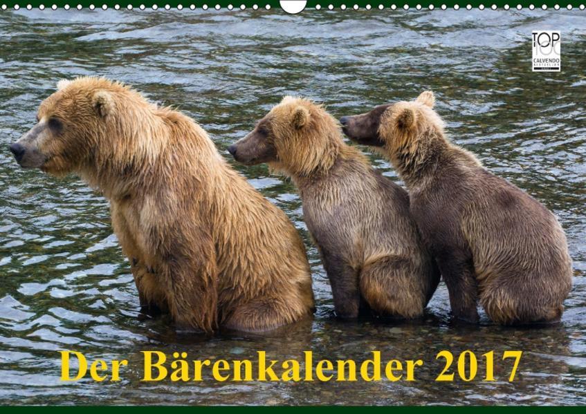 Der Bärenkalender 2017 (Wandkalender 2017 DIN A3 quer) - Coverbild
