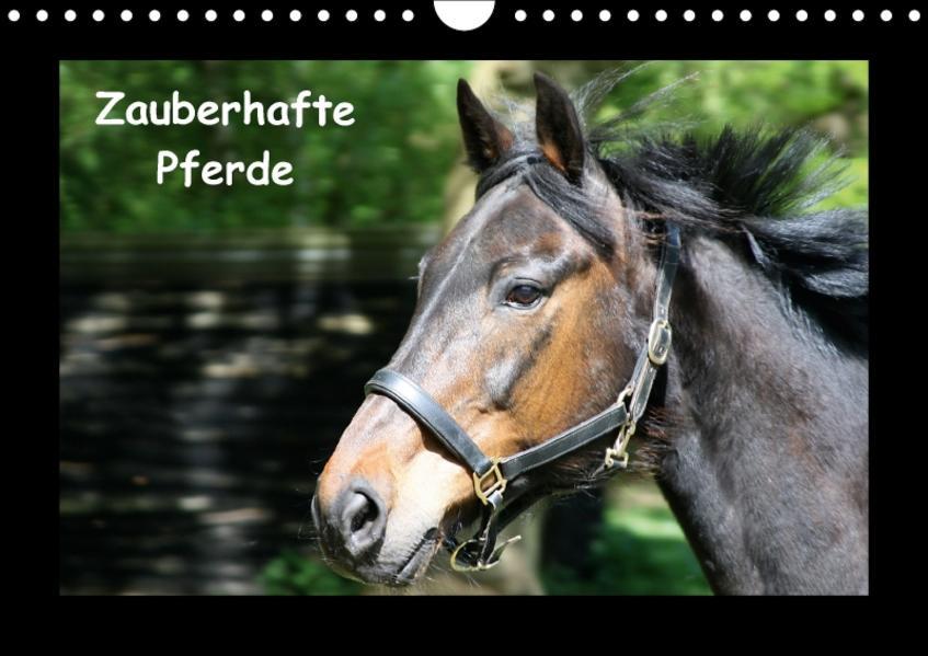 Zauberhafte Pferde (Wandkalender 2017 DIN A4 quer) - Coverbild