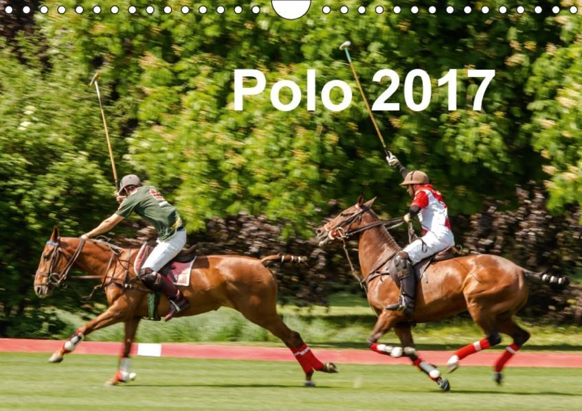 Polo 2017 (Wandkalender 2017 DIN A4 quer) - Coverbild