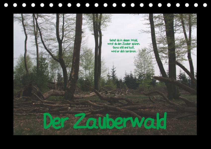 Der Zauberwald (Tischkalender 2017 DIN A5 quer) - Coverbild