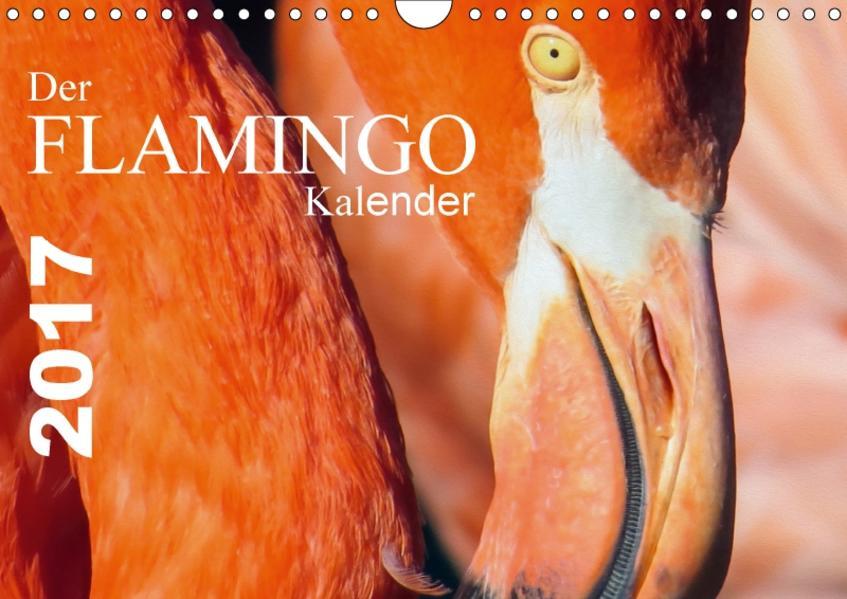 Der Flamingo Kalender (Wandkalender 2017 DIN A4 quer) - Coverbild
