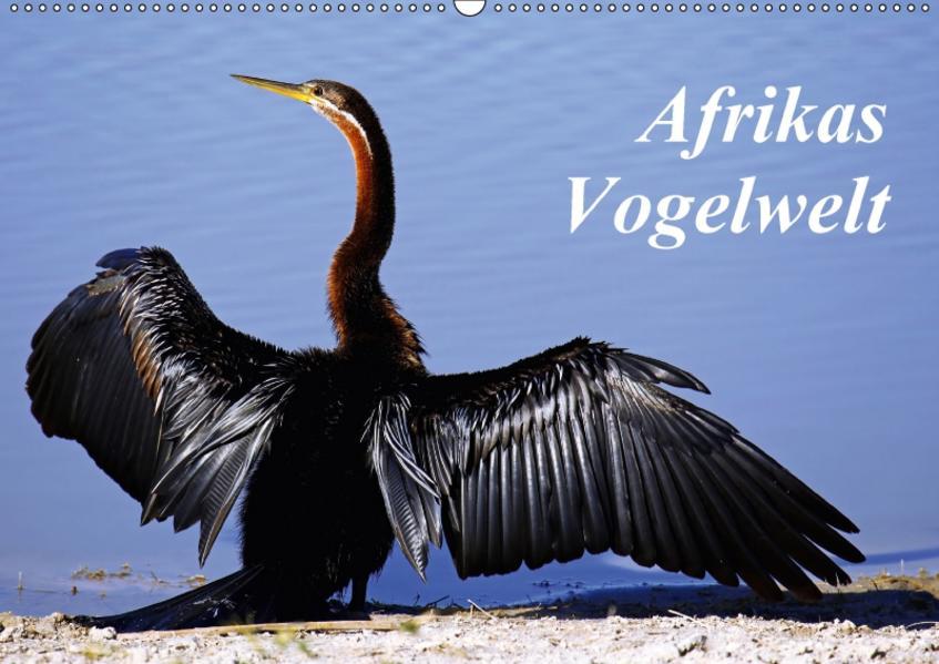 Afrikas Vogelwelt (Wandkalender 2017 DIN A2 quer) - Coverbild