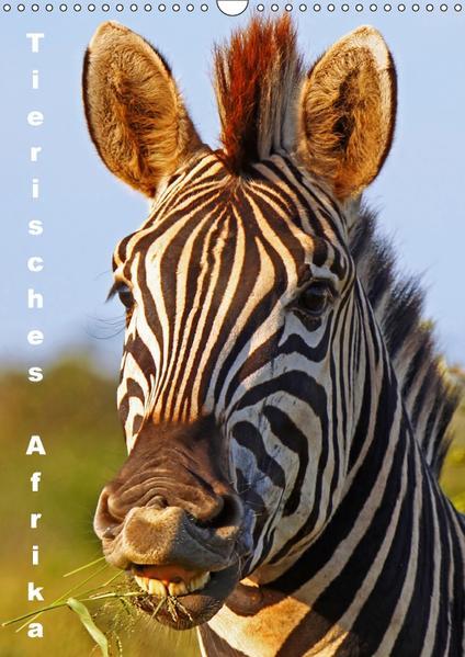 Tierisches Afrika (Wandkalender 2017 DIN A3 hoch) - Coverbild