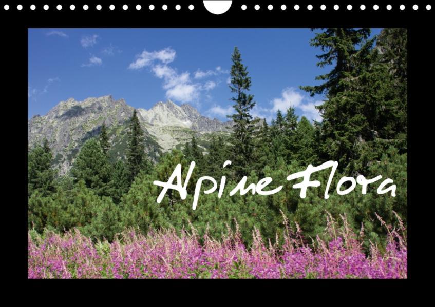 Alpine Flora (Wandkalender 2017 DIN A4 quer) - Coverbild