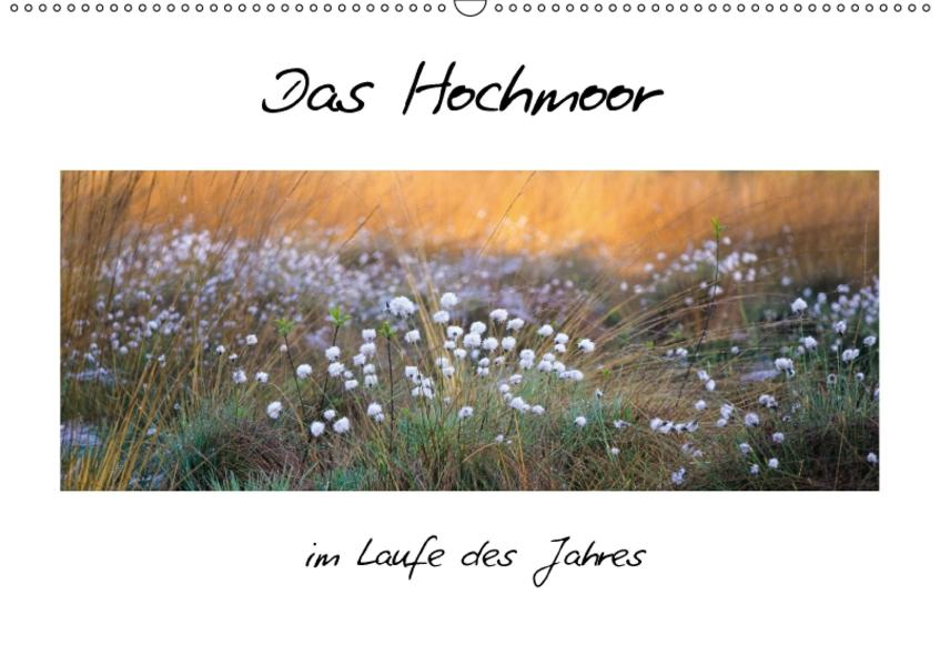 Das Hochmoor im Laufe des Jahres (Wandkalender 2017 DIN A2 quer) - Coverbild