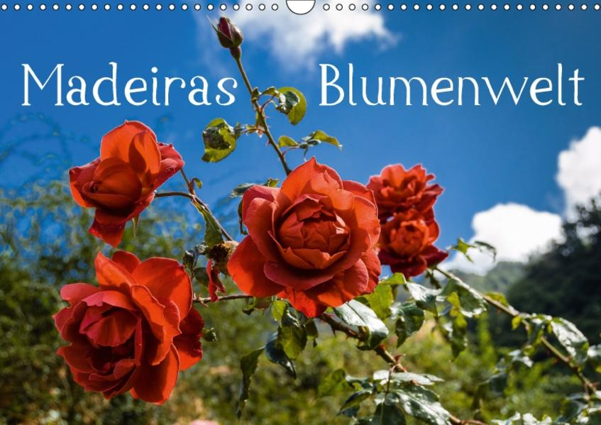 Madeiras Blumenwelt (Wandkalender 2017 DIN A3 quer) - Coverbild