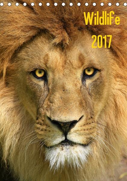 Wildlife 2017 (Tischkalender 2017 DIN A5 hoch) - Coverbild
