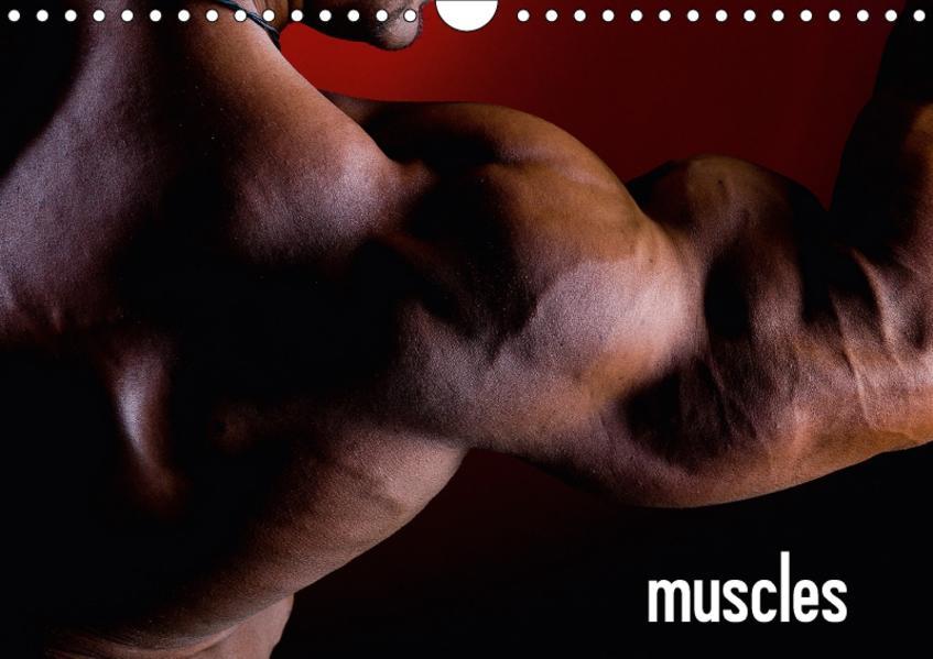 muscles (Wandkalender 2017 DIN A4 quer) - Coverbild