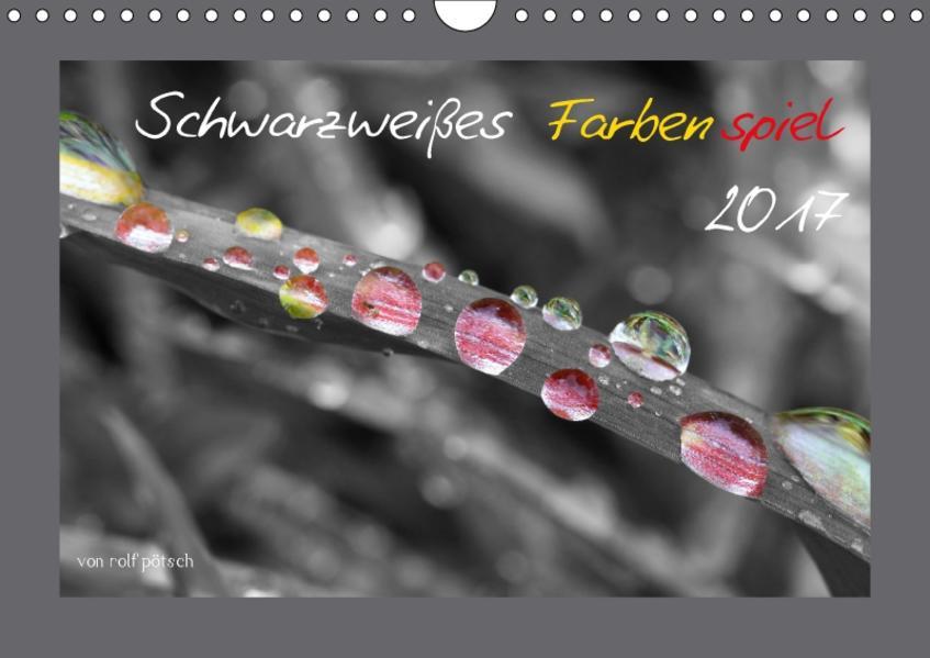 Schwarzweißes Farbenspiel 2017 / AT Version (Wandkalender 2017 DIN A4 quer) - Coverbild