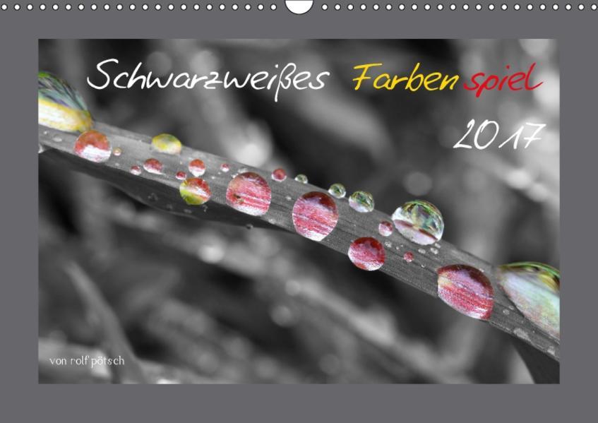 Schwarzweißes Farbenspiel 2017 / AT Version (Wandkalender 2017 DIN A3 quer) - Coverbild