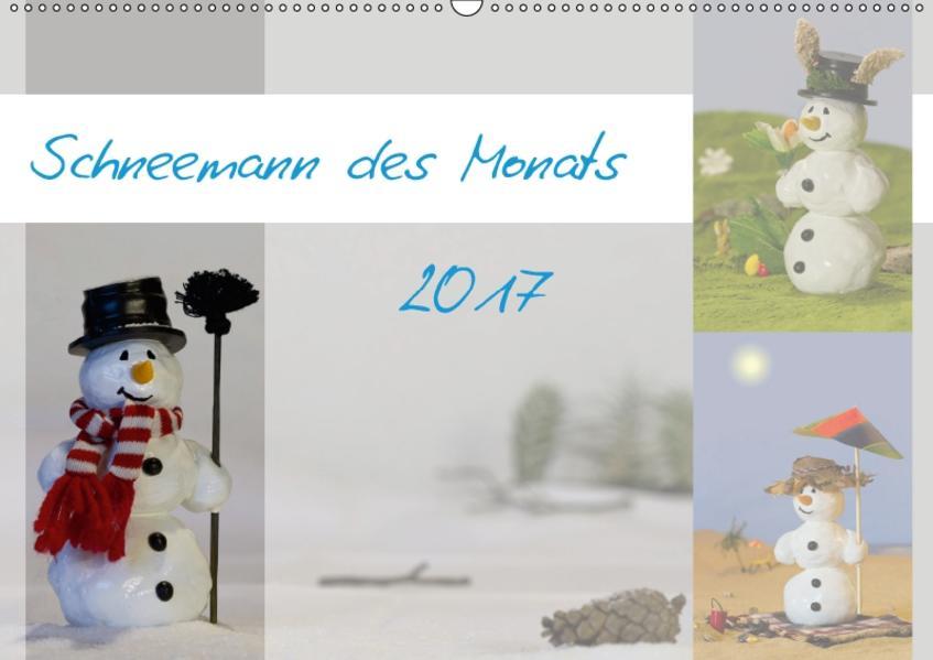 Schneemann des Monats 2017 (Wandkalender 2017 DIN A2 quer) - Coverbild